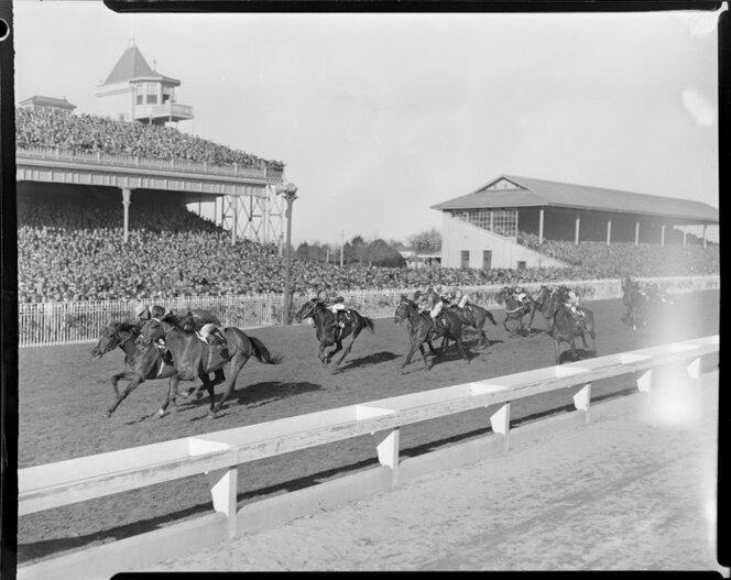 1948 Ellerslie Racecourse, Auckland, York Handicap, Tiger Tan and Artificer coming into the finish line.jpg