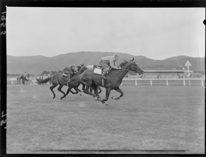 1955 Jockeys racing horses at track trial for Wellington Cup day, Trentham Racecourse, Upper Hutt.jpg