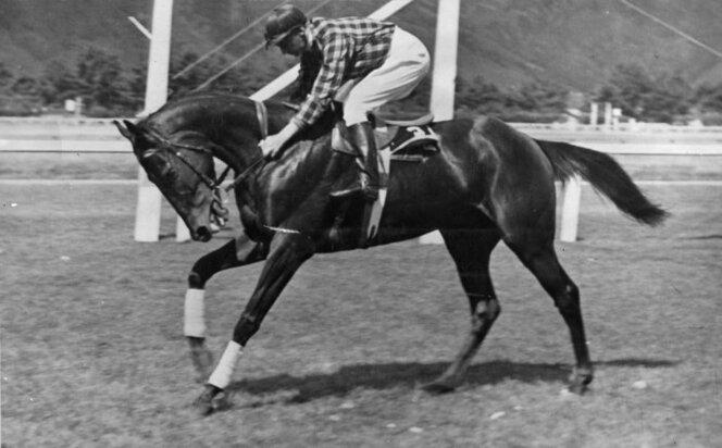 1936 Racehorse Happy Landing with jockey Roy Reed, 1936. Location unidentified, probably Wellington region. Photograph taken by a staff photographer for the Evening Post (Wellington) newspaper.jpg