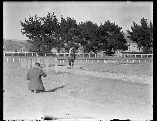 11 Jan 1951 The racehorse Beaumaris in training(6).jpg
