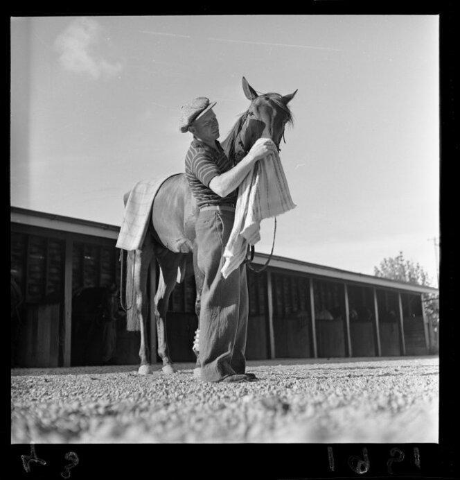 11 Jan 1951 The racehorse Beaumaris in training(8).jpg