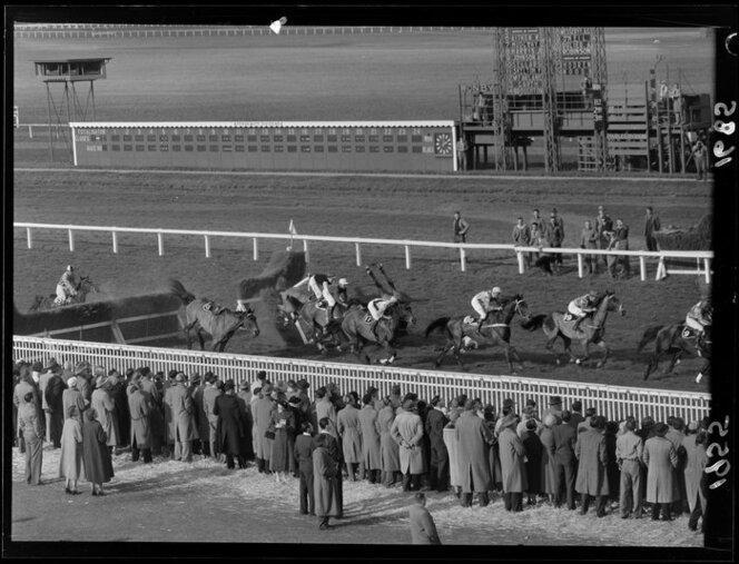 1955 Horse racing at Trentham, showing falling horses and jockeys, Upper Hutt.jpg