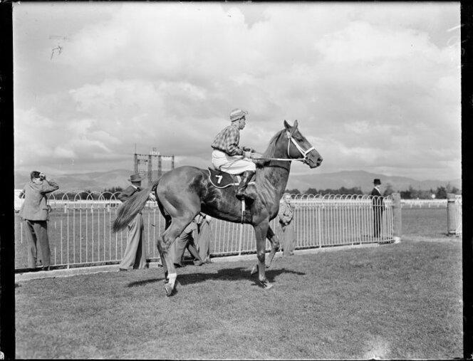 Mainbrace and jockey Grenville Hughes at Awapuni. Photograph taken 23 Apr 1951.jpg