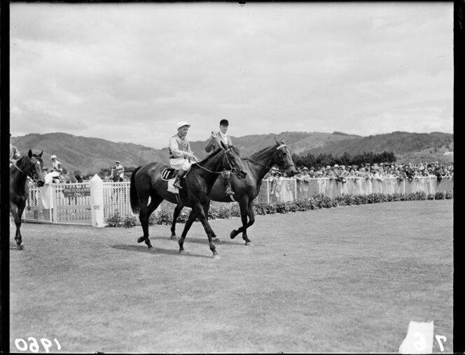 January 1950 Beaumaris, winning horse in Wellington Cup, Trentham Racecourse.jpg