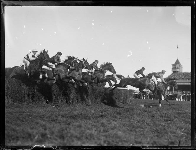 Steeple chase at Ellerslie Race Course, Auckland, includes race horses and jockeys Photo by Leo White.jpg