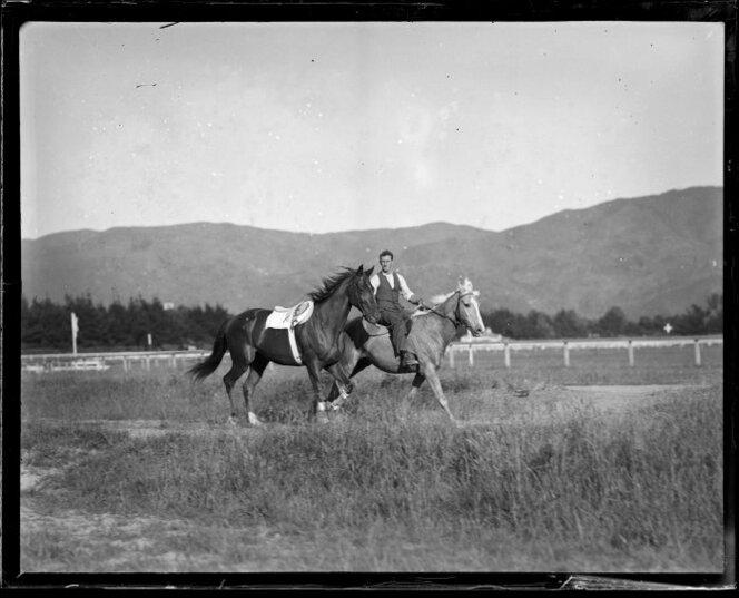 Dec 1931 Racehorse 'Phar Lap' (on left) being exercised at Hugh Telford's stables at Trentham, Upper Hutt, Handler, and other horse, unidentified.jpg