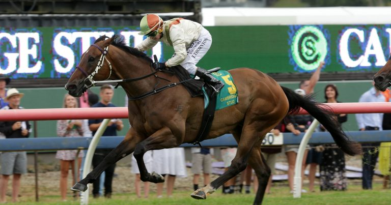 Group One performers pleasing Latta