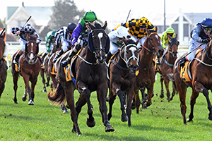 New Plymouth riches on their way to Te Aroha as quick as a flash.