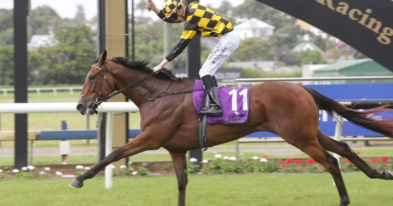 SIRES PRODUCE STILL TARGET FOR PROBABEEL