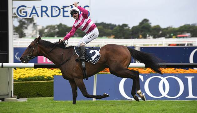 FOURTH COOLMORE CLASSIC FOR QUINTON