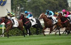 FURORE ADDS TO NZ RECORD IN HK DERBY