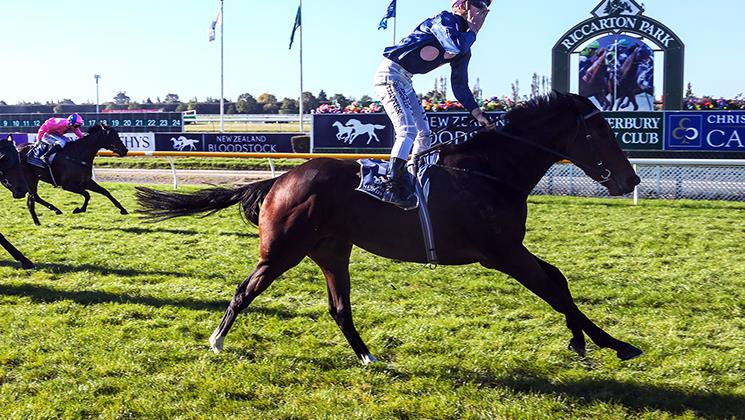 BEYOND THE FORT PREVAILS IN WARSTEP STAKES