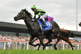 OUR BIG MIKE IN SYDNEY STAKES RACE