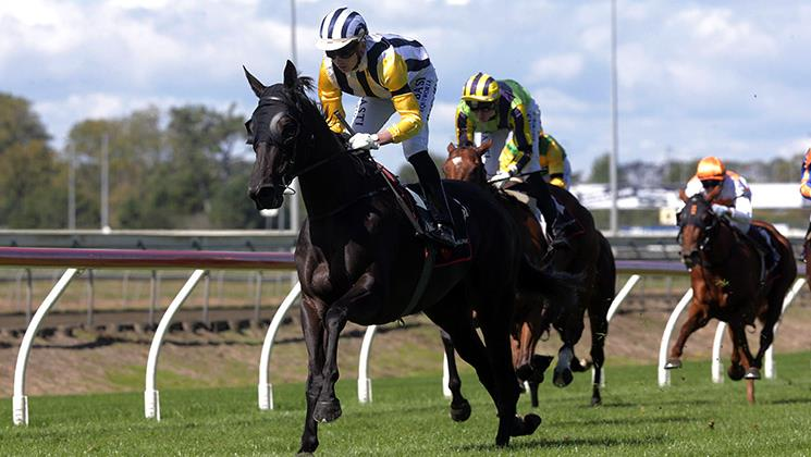 OUR INTRIGUE PRIMED FOR QUEENSLAND OAKS