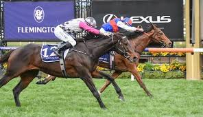 STEEL PRINCE EARNS MELBOURNE CUP SLOT