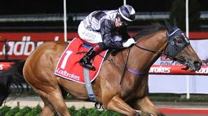 HOUTZEN AUSSIE HOPE IN KING'S STAND STAKES