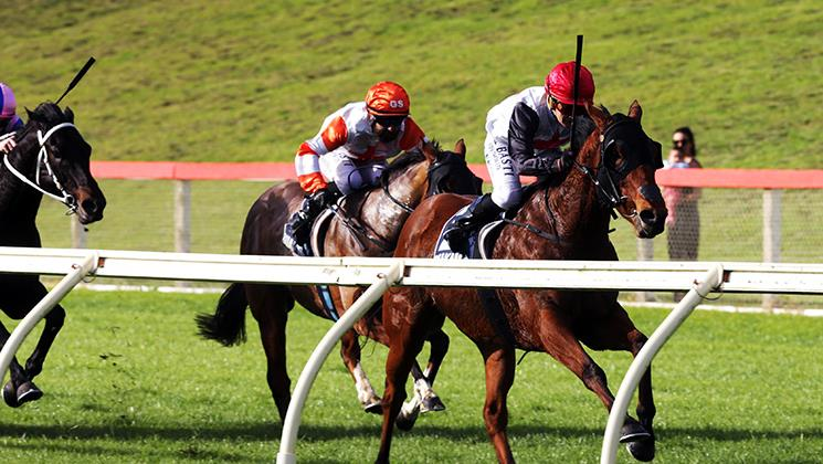 LONG TRIP PAYS DIVIDENDS FOR LUCYINRIO