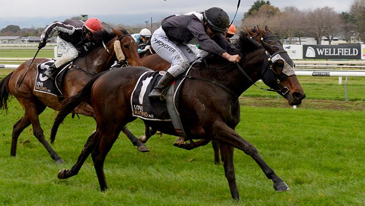 ROSEWOOD SET TO BACK UP AT TAURANGA