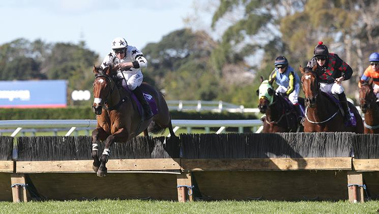 HAWKE'S BAY HURDLES NEXT FOR TOMMYRA