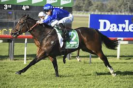 TREKKING PEAKS AT RIGHT TIME TO WIN STRADBROKE