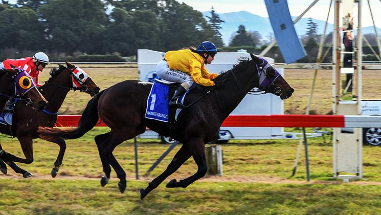 WAIMATE'S FINAL RACE DAY