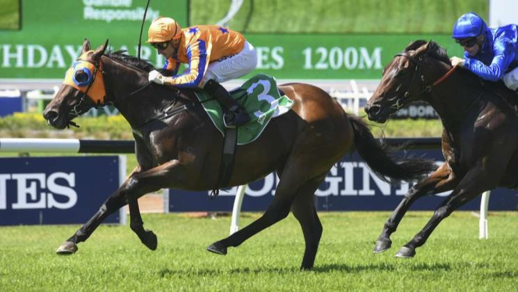 Avantage to back-up in Shannon Stakes