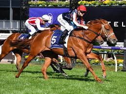 Guineas draw against favourite