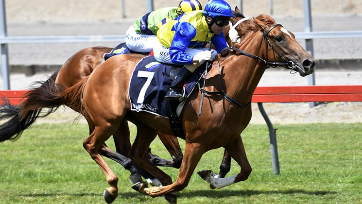 Ritchie keen for two-pronged Guineas attack