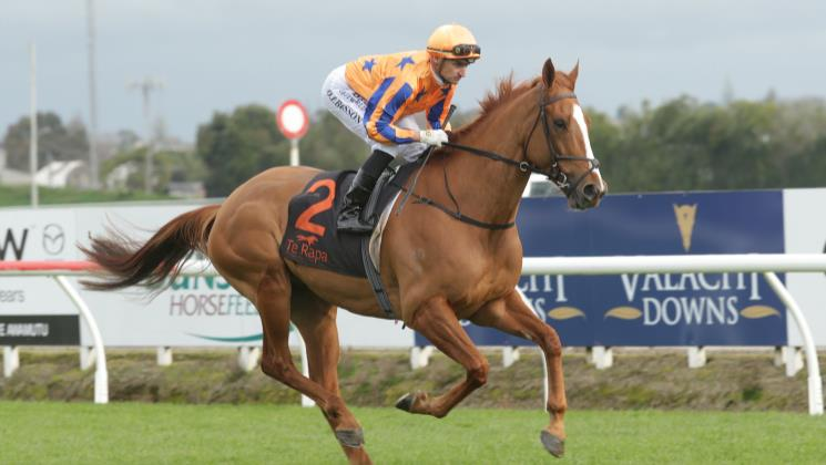 Shark caught in selection headache for Moonee Valley