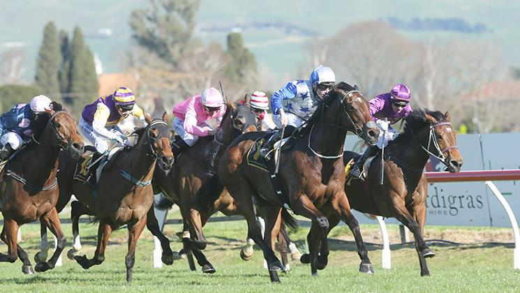 St Leger to dictate Sir Charles Road's spring
