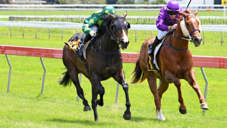 Ready To Run graduate poised for bold debut