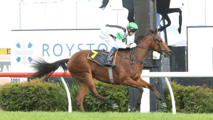 Kali spot on for Group One