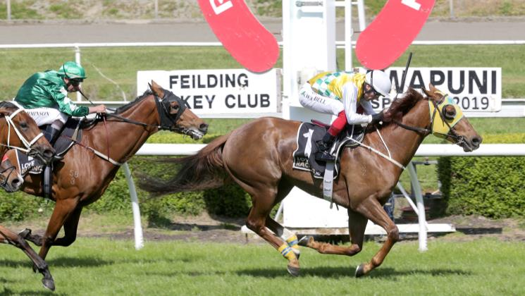 Oulaghan casting his eye on more Riccarton success