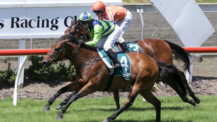 Yearn grabs deserved stakes success