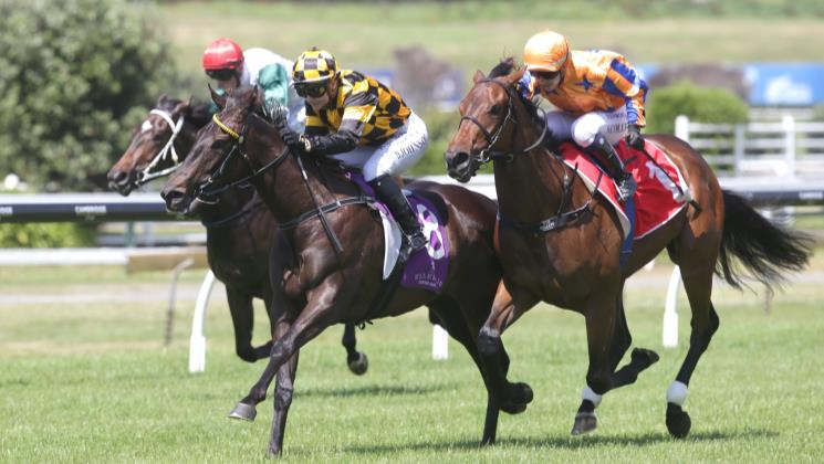 Controversial decision secures Karaka Million berth