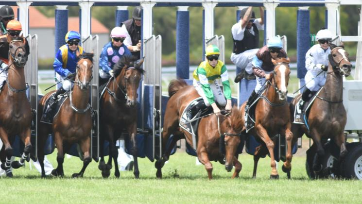Starting gate stumble no barrier to Beauden