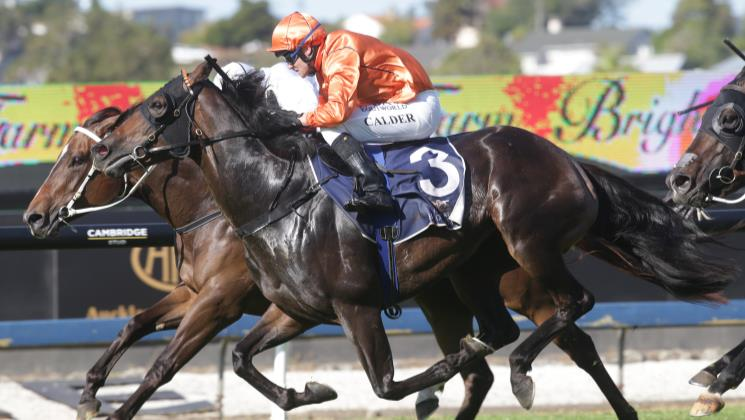 Its Destinys Child bounces back in Ellerslie Group Three