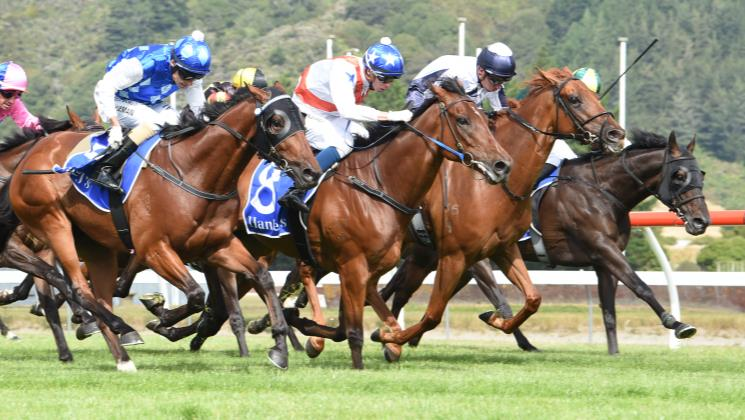 Guy at it again with Trentham feature victory