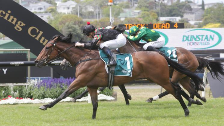 McDonald magic in Stayers Final
