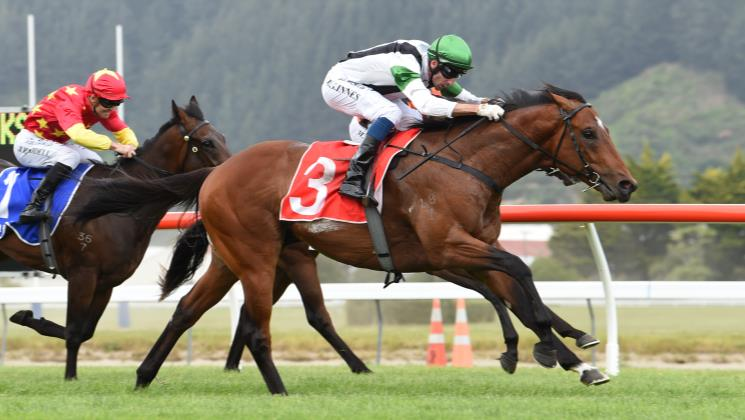 Pike gearing up for Karaka assault