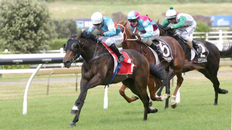 Riodini seeking Group One redemption
