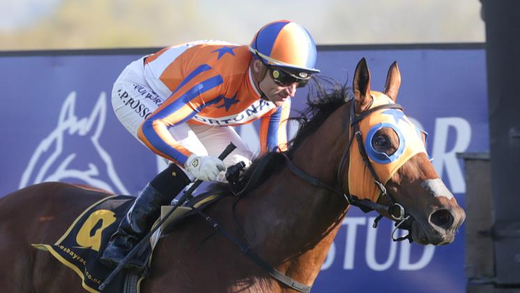 Bosson ticking up frequent flyer points