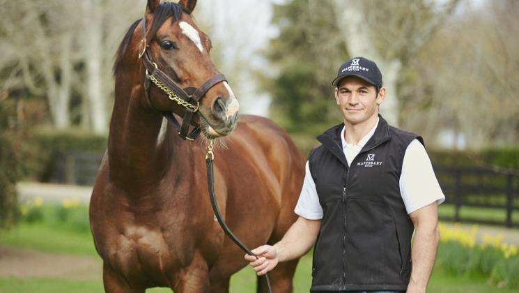 Contributer heads Mapperley Stud roster