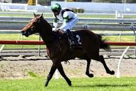 PIKE DELIGHTED COLT SPARED HEAVY SLOG
