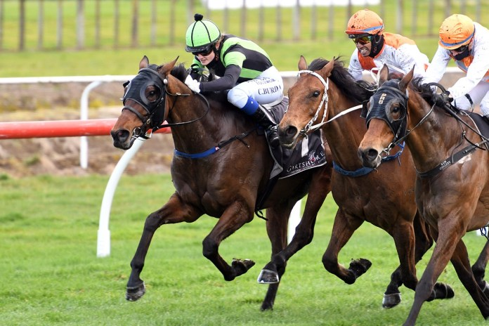 Jericho Cup aspirations for Junior